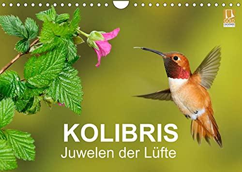 Kolibris - Juwelen der Lüfte (Wandkalender 2022 DIN A4 quer)