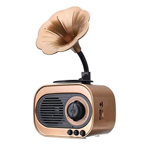 L-yxing Sonido Portátil Radio Bluetooth Altavoz TF Tarjeta Manos Dislojamiento Impermeable Altavoces Música Amplificador Buena Apariencia (Color : Gold)