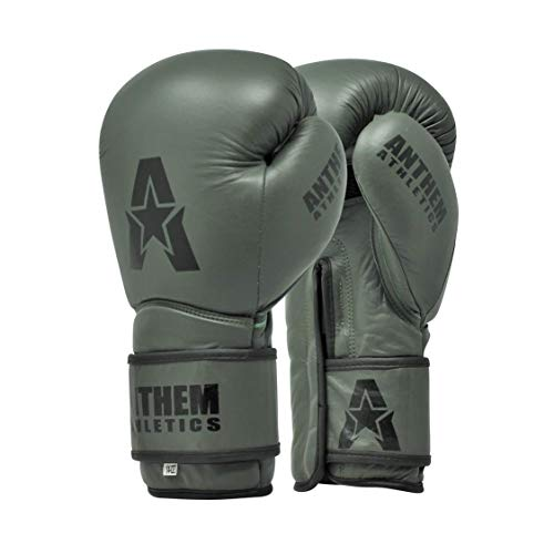 Anthem Athletics Boxing Gloves