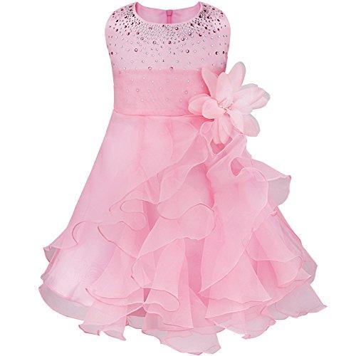 iiniim Fille Princesse Robe Bébé Cérémonie Longue Fleur en Organza sans Manches (12-18 Mois, Rose)