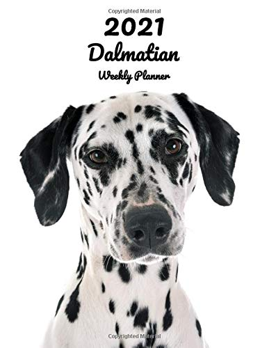 2021 Dalmatian Weekly Planner: 14 Months | 124 pages 8.5x11 in. | Diary | Organizer | Agenda | Appointment | Calendar | For Dog Lovers