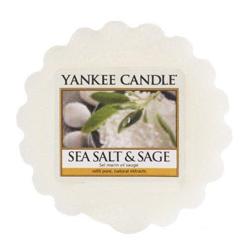 YANKEE CANDLE Meer Salz und Salbei Duftwachstörtchen zu Schmelzen, wachs, Weiß, 5.7 x 5.7 x 1.7 cm