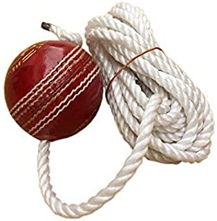 WW Leather Cricket Shot Practice Hanging Ball, String Multicolor