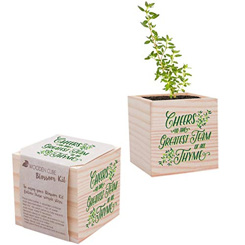 Desk Accessory for The Office - Plant Seed Packet, Peat Pellet, Wooden Cube Planter with Unique Design - Appreciation Gift - - Greatest Team of All Thyme