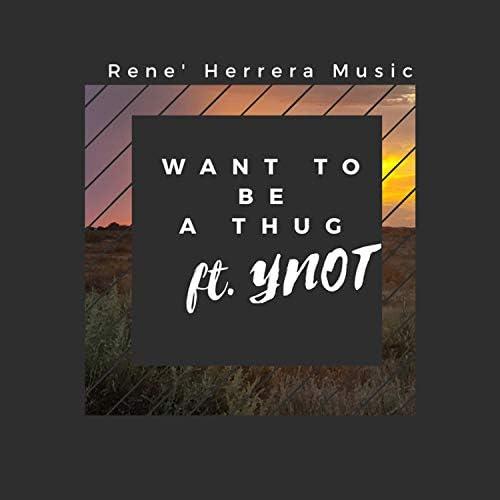 RENE HERRERA MUSIC