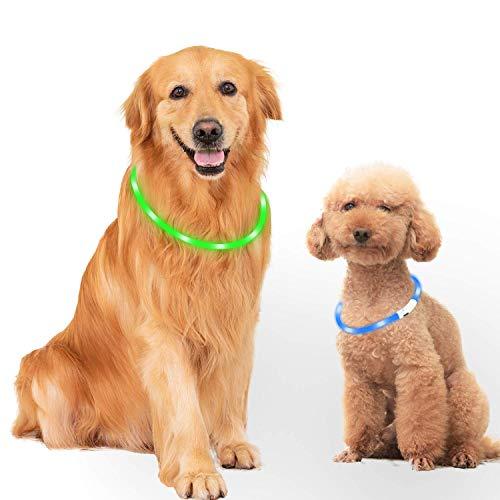 Mitening Hundehalsband Leuchtend, 2 Stück Leuchthalsband Hund LED Hunde Halsband USB Wiederaufladbar Längenverstellbarer Haustier Sicherheit Kragen für Hunde und Katzen 3 Modus 12 Lichte