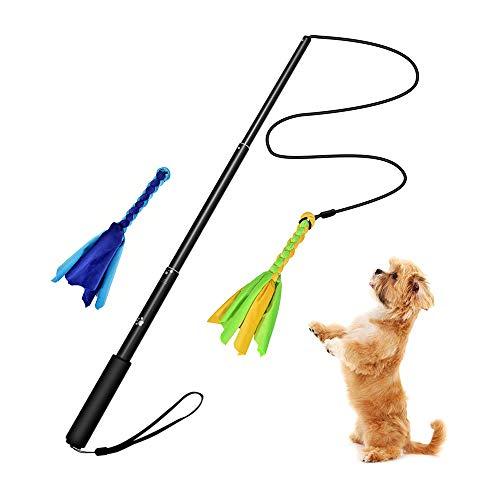 MOPOIN Juguete Interactivo para Perros, Juguete para Masticar con 2 Cuerdas, caña de Pescar para Perros, Teaser para Mascotas para Ejercicios de Entrenamiento