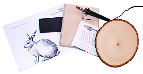 Walnut Hollow Creative Woodburning (Pyrography) Kit for the Beginner in Arts, Crafts & Hobby