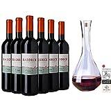 Weingeschenkset für den Rotweinliebhaber (6 x 0,75l) | fruchtbetonter Rotweincuvée inkl. Dekanter