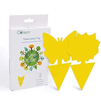 Garsum Sticky Trap,Fruit Fly and Gnat Trap Yellow Sticky Bug Traps for Indoor/Outdoor Use - Insect Catcher for White Flies,Mosquitos,Fungus Gnats,Flying Insects - Disposable Glue Trappers 12 pcs