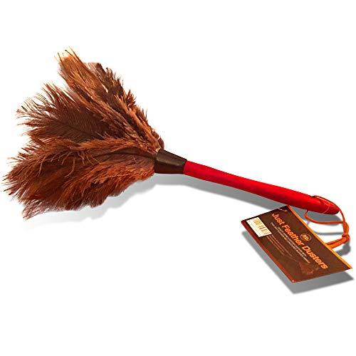 """Plumero de plumas de avestruz auténticas calidad premium 38cm (15"""") - Atrae las partículas de polvo - Plumas suaves y gruesas y mango de madera ergonómico y duradero - Limpieza fácil y eficiente"""