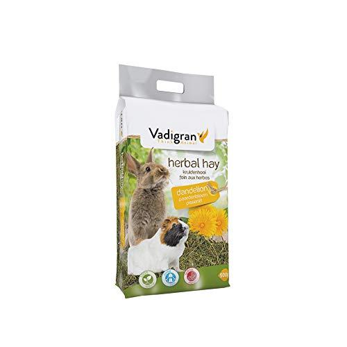 VADIGRAN Vadibed Foin de Fleurs de Pissenlit pour Petit Animal 500 g