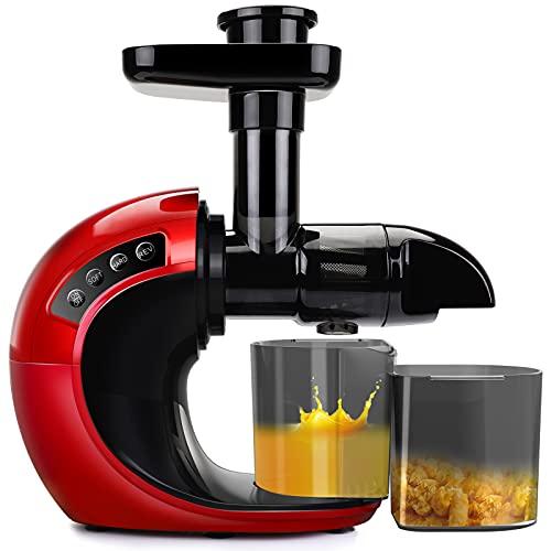 Juicer Machines, Slow Cold Press Juicer Quiet Motor, 2 Speed...