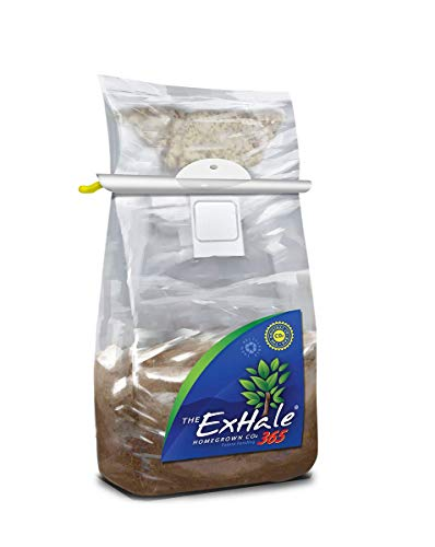 The Exhale Homegrown CO2 365 - Self-Activated Bag for Grow Rooms & Tents with Hanger & THCity Gloves