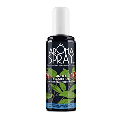AROMA SPRAY - Spray d'Ambiance - Aromathérapie - Huiles Essentielles 100% pures et naturelles - 100 ml (Girofle Camphre)