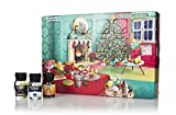 That Boutique-y Gin Company Advent Calendar (2021 Edition) Drinks by the Dram | 24 x