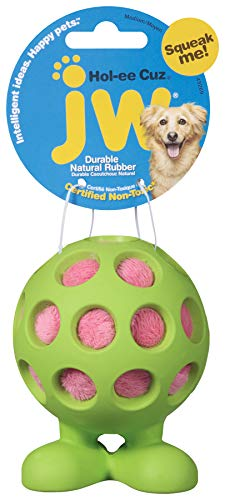JW Pet Company HOL-Ee Cuz Hundespielzeug, mittelgroß