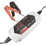 Cargador Mantenedor de Batería 12V/24V - Cargador Portátil Totalmente Automático de 15 Amp para Baterías de Plomo e Iones de Litio con Protección Contra Sobrecarga - Adecuado para Coches, Motocicletas