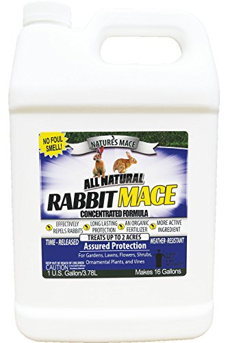 Nature's Mace Rabbit Repellent 1 Gal Concentrate/Covers 2 Acers/Rabbit Repellent and Deterrent/Keep Rabbits Out of Your Lawn and Garden/Safe to use Around Children & Plants