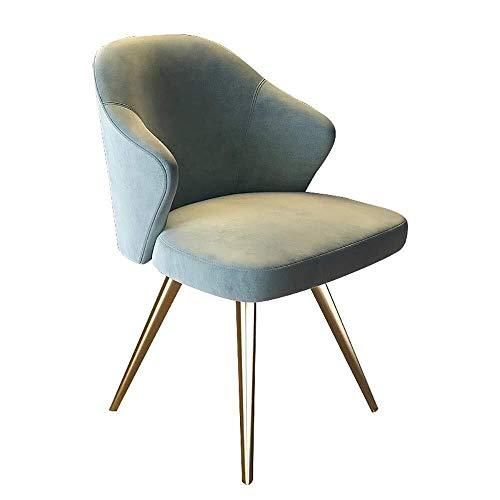 CENPEN Silla de comedor, 2 sillas, ligera silla de comedor, cafetería, acero inoxidable, moderno y minimalista, sillas de cocina (color: azul, tamaño: 52 cm x 52 cm x 82 cm)