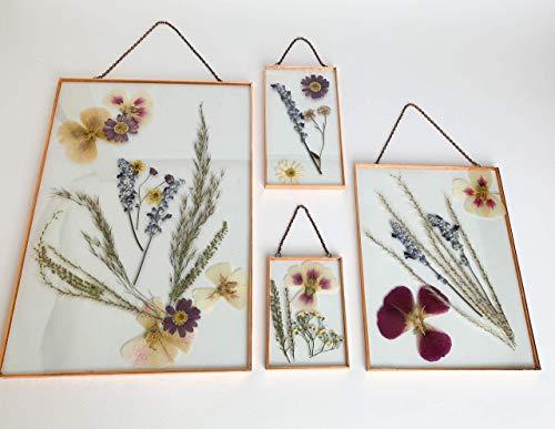 Gepresste Blumen Bilderrahmen Herbarium Trockenblumen Rahmen