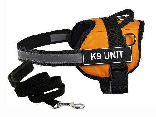 Dean & Tyler's DT Works Orange 'K9 UNIT' Harness with , Small, and Black 6 ft Padded Puppy Leash.
