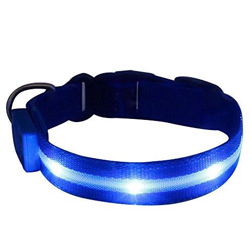 Hunde LED Leuchthalsband, Tping USB Aufladbar Hundehalsband Leuchtend Halsband Hunde Leuchtband Verstellbar Länge mit Verschiedenen Farben und Größen - Groß, Blau