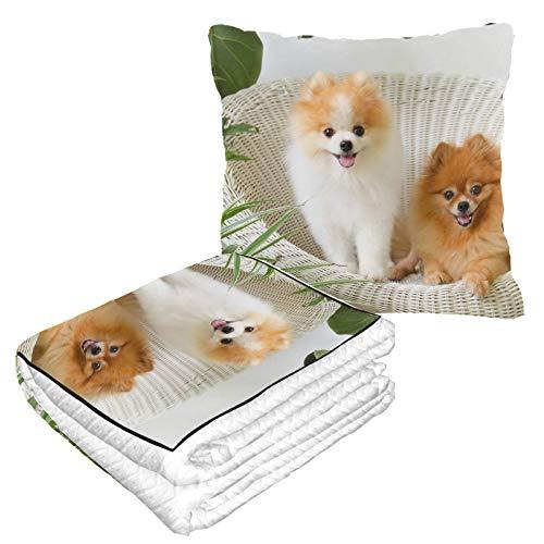 und verspieltes Pomeranian Airplane Kissen warm weich 2-in-1 Combo Decke für Reisen, Camping, Autoausflüge, Flugzeugkissen für Reisen für jede Reise