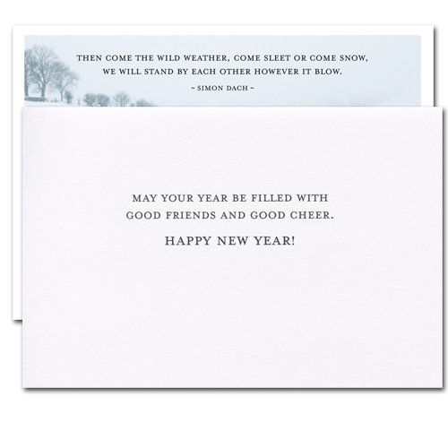 Sleet or Snow: New Year Holiday Cards - box of 10 cards & envelopes Photo #4