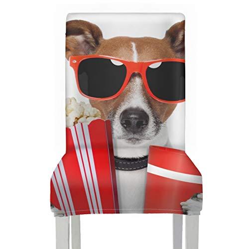 Funda para silla de comedor Perro con gafas de sol Fundas de palomitas de maíz y bebida Cola Sillas para comedor Poliéster elástico extraíble lavable Fundas de asiento para sillas lindas para el hoga