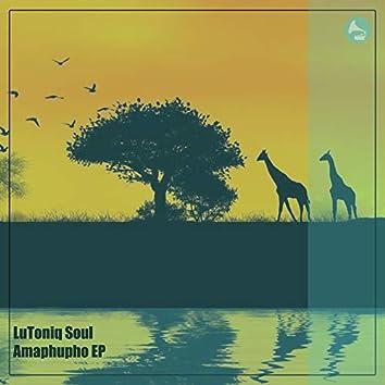 Amaphupho EP