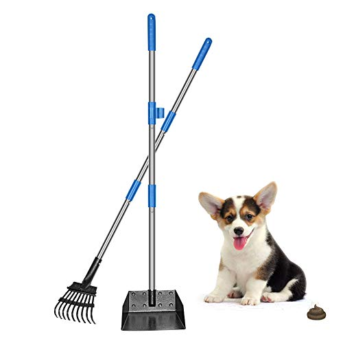 QiMH Dog Pooper Scooper, Long Handle Stainless Metal Pet Poop Tray and Rake Set for Small Medium Dogs Waste Removal, Clean Response Dog Waste Bin & Rake