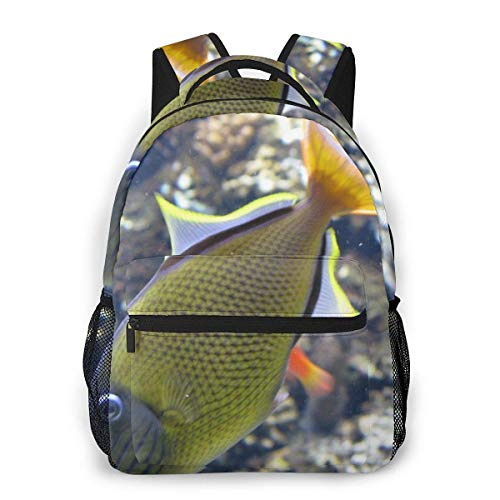 Lawenp Fashion Unisex Backpack Golden Sea Fish Bookbag Lightweight Laptop Bag for School Travel Outdoor Camping