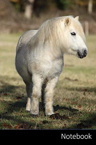 Notebook: Pony taccuino | agenda | quaderno delle annotazioni | diario | libro di scrittura | carnet | zibaldone - 6 x 9 (15,24 x 22,86 cm), 110 pagine, superficie lucida.