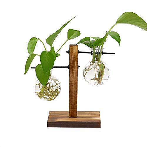 LACKINGONE Hydroponik Vase Hängevase Pflanzenvase Glasvase Tischvase Dekovase mit Holz Halter Glasvase * 2(B)