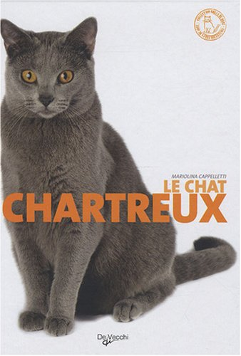 Le chat Chartreux