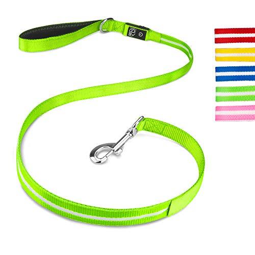 BI International ® Hundeleine Leuchtend & Aufladbar – Die passende Ergänzung für alle Leuchthalsbänder - Wasserdicht & aus Verstärktem Nylon - Hochwertig & Sicher
