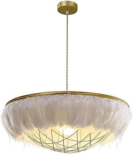 WOOLIY Lámpara Colgante De 2 Luz para Dormitorio Moderno Pantalla De Plumas Blancas Lámpara Colgante De Metal Lámpara De Mesa De Comedor De Altura Ajustable Enchufe E27