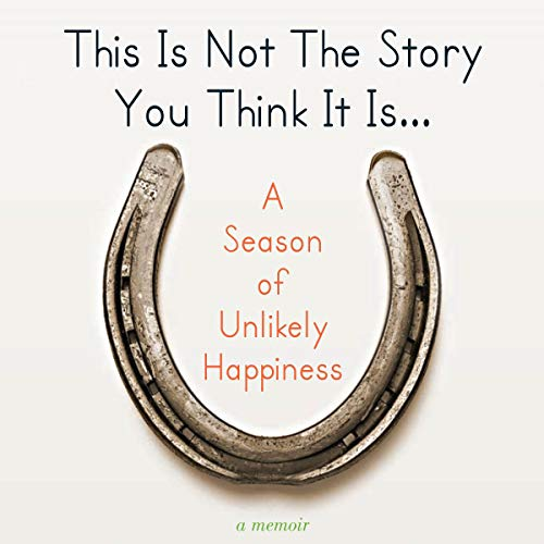 This Is Not The Story You Think It Is... audiobook cover art