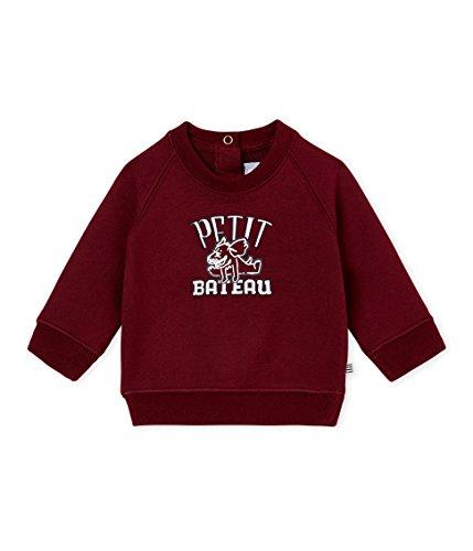 Petit Bateau SWEAT SHIRTS Sweat-shirt Bébé garçon Marron (Ogre 02) 1 an (Taille fabricant: 12M 12MOIS)