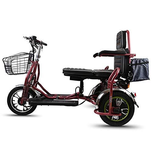 Qfzfei 3 Rad Elektroroller,Faltbarer Elektroscooter,Doppeltes Elektrisches Dreirad, Maximale Belastung 180 Kg, Verstellbarer Sitz, Umkehrbar (Size : 30km)