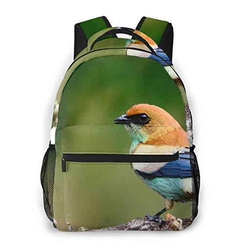 Lawenp Mochila Unisex de Moda Nature Bird Bookbag Ligero para computadora portátil para Viajes Escolares Acampar al Aire Libre