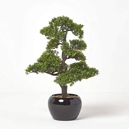 Homescapes künstlicher Bonsai Baum getopft schwarzer Topf grün 70 cm hoch