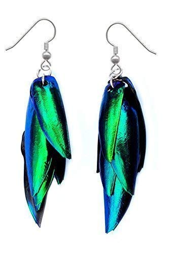 Real Beetle Wing Earrings - Bugs, Insects, Green, Colorful, Nature, Natural, Taxidermy, Beetles