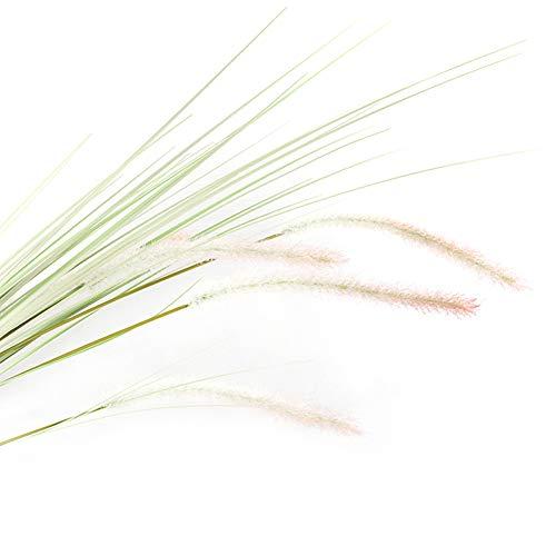 fuchsiaan 1 Pieza De Tela Artificial para Plantas, Césped para El Hogar, Decoración De Mesa De Boda para Oficina, Apariencia Y Color Realistas, Tacto Cómodo, Duradero, Reutilizable. Blanco Rosa