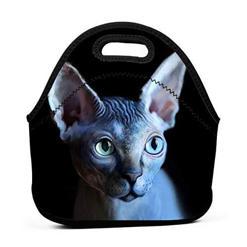 MrRui Cool Sphynx - Bolsa de almuerzo portátil para gato, bolsa Bento lonchera, bolsa multifuncional con cremallera, paquete para escuela, trabajo y oficina