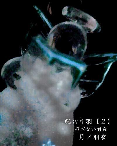 風切り羽【2】: 飛べない羽音