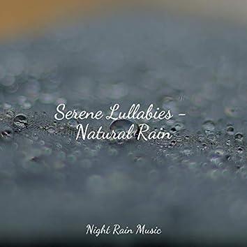 Serene Lullabies - Natural Rain