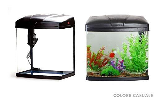 takestop® Aquarium 9 litres T240F avec système de filtrage et éclairage 27 x 19,5 x 31 cm Poissons tropicaux Eau salée 5 W 300 L/H Couleur aléatoire