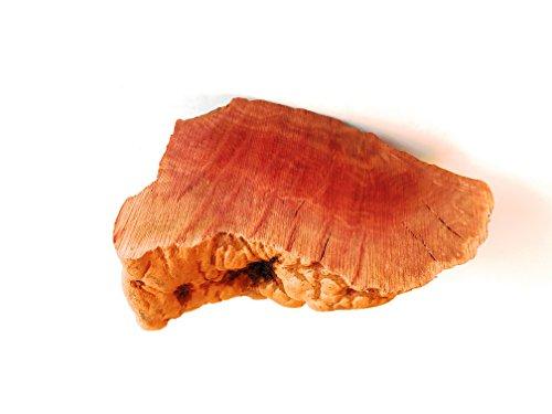 Barkworthies - Root Chew - 100% Organic All...